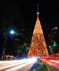 """""""El árbol de navidad más grande en México [The largest Christmas tree in Mexico],"""" by Antakistas, via Flickr -- I spy treble clefs and musical notes in there!!"""