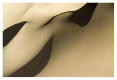 Whipped Cream Dunes of the Sahara, Erg de Bilma - Michael Fay - Fine Art Print