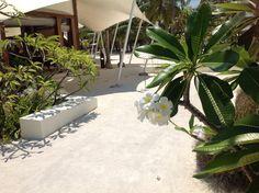 Paradise - great #Maldives