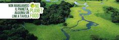 """One Planet Food"""", la nuova piattaforma web interamente dedicata all'alimentazione e a tutti gli 'affamati' di news sul rapporto tra cibo e ambiente: dal cambiamento climatico all'agricoltura, dalla salute umana ai consigli per menù green a basso contenuto di acqua e CO2 e una spesa 'anticrisi' con prodotti di stagione e a km ø per attrezzarsi contro il recente caro-carburante e favorire l'economia locale."""