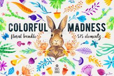 Colorful Madness Floral Bundle by Stella's Graphic Supply on @creativemarket