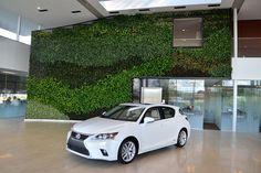 Large Green Wall in a Lexus Dealership Lexus Dealership, Green Walls, Skylight, Luxury Branding, Centre, Interior, Inspiration, Biblical Inspiration, Dormer House