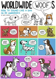 Different languages perceive animal sounds differently. If you think your language represents animal sounds accurately, you are so wrong. Well, when it comes to the sounds animals make, all languag… Dog Sounds, Sounds Like, Korean Language, Japanese Language, Dog Language, The Bloodhound Gang, James Chapman, Different Languages, 1 Gif