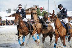 BMW Polo Masters - Megve (Gilles Forestier) Tags: winter horse snow france nature sport cheval hiver competition bmw neige genve moutain polo equine photographe quitation megve lesfermesdemarie domainedumontdarbois gillesforestier wildfieldsphotography