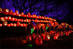 Come see over 5,000 hand-carved Jack O'Lanterns in New York and Los Angeles! RISE of the Jack O'Lanterns is a family-friendly, all ages Hall...