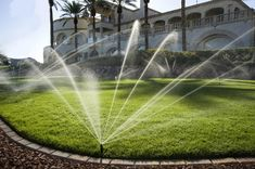 Sprinkler systems save you time & money as they make watering easier. Our team of experienced & dedicated professionals install & upgrade high-quality sprinklers in Mississauga. Sprinkler System Design, Water Sprinkler System, Garden Sprinklers, Water Efficiency, Landscape Lighting, Back Gardens, The Help, Waterfall, Lawn