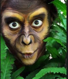 Planet of the Apes Chistery