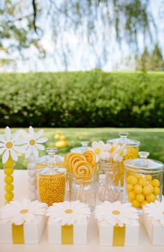 Summer is coming and it's the perfect time to throw a bright and colorful daisy party. These Daisy Party Ideas by Darcy Miller are the perfect inspiration. Daisy Party, Daisy Wedding, Bee Party, Yellow Wedding, Wedding Candy, Yellow Birthday Parties, Candy Stand, Yellow Candy, Bridal Shower