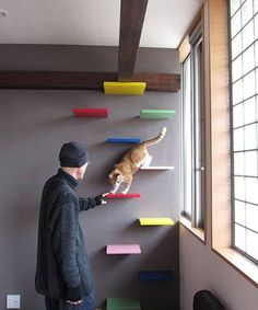 Estanterias para gatos DIY I