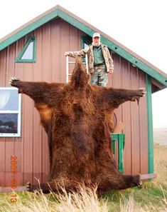 bear hide - need this down by the fireplace!