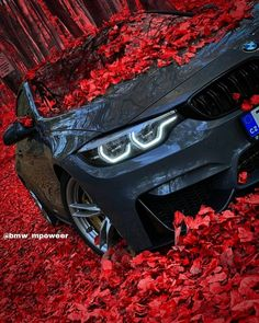Bmw M4, Mercedes Wallpaper, Bmw Wallpapers, Porsche 911 Turbo, Best Muscle Cars, Audi Cars, Cars Auto, Expensive Cars, Car Photography