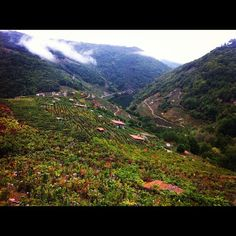 #RibeiraSacra by nachoestevez via Twitter