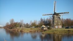 Tulips & Windmills, Viking River Cruises. Want to explore such #beautiful #places, this #summer, via #cruise? Check out our #wishcruises website for all kinds of #cruiseinformation, #cruisereview and #news.