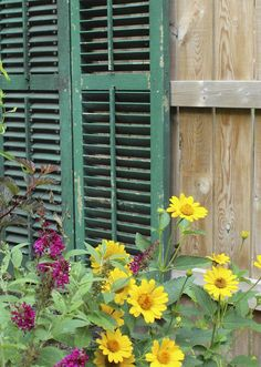 Garden Decor Ideas - use old shutters to add character to a fence line.