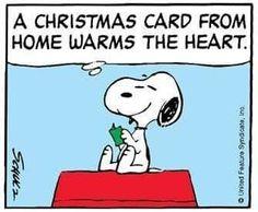 Correct you are, Snoopy. Less than 2 weeks? Christmas Comics, Peanuts Christmas, Charlie Brown Christmas, Charlie Brown And Snoopy, Christmas Fun, Xmas, Christmas Quotes, Christmas Cards, Snoopy Cartoon