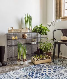 Large wire floor unit, Chrome clip lamp, Issac iron armchair in gunmetal, Graham & Green Furniture Styles, New Furniture, Living Room Furniture, Garden Furniture, Wire Storage, Locker Storage, Bar Interior, Plant Wall, Interior Design Inspiration