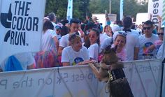 Coco offering therapy to runners before the 2016 Color Run In Fort Lauderdale, FL.
