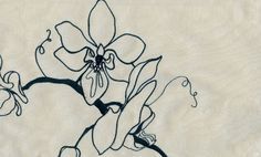 Orchid Silk Curtain Fabric Cream silk with black embroidered orchid design