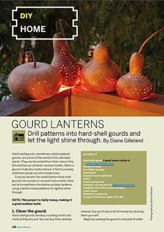 Diane Gilleland's gourd lantern project appears in MAKE, Volume 21, and is the subject of this week's Weekend Project video! You can also download the proj