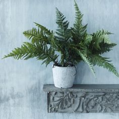 Faux Fern Grass in Pot - View All - Shop By Category - New For Summer