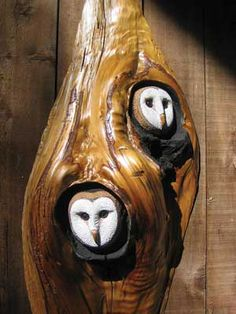 ...work done by Don Madison from charred California wildfire trees....