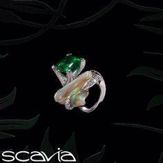 Scavia