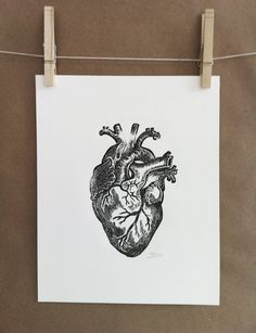 Anatomical heart original lino print by RustyAppleStudio on Etsy