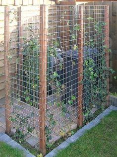Stört Sie eine sichtbare Mülltonne auch so? 8 tolle Methoden, um die Mülltonne im Garten zu verbergen - DIY Bastelideen