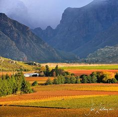 Hex River valley Western Cape South Africa Italy Landscape, Landscape Photos, Landscape Art, Landscape Paintings, Landscape Photography, All About Africa, Cape Town South Africa, Most Beautiful Cities, Beautiful Scenery