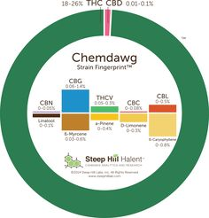 The parent of strains like Sour Diesel and OG Kush, Chemdawg is known for its distinct, diesel-like aroma.