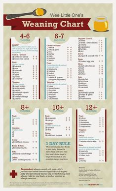 """The Styled Child: """"Wee Little One's Weaning Chart"""""""