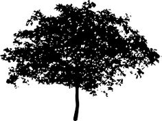 Free Image on Pixabay - Tree, Bush, Nature, Leaves, Trunk Free Pictures, Free Images, Black And White Drawing, Tree Tops, Silhouette Vector, Vector Graphics, Illustration, Dandelion, Nature