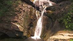 Chuao. Parque Nacional Henri  Pittier.