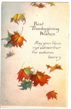 Best Thanksgiving Wishes. May your blessings out number the Autumn Leaves. Vintage Thanksgiving Postcard by bulldoggrrl Thanksgiving Blessings, Thanksgiving Greetings, Vintage Thanksgiving, Thanksgiving Quotes, Thanksgiving Decorations, Thanksgiving Recipes, Thanksgiving Pictures, Thanksgiving Appetizers, Thanksgiving Outfit