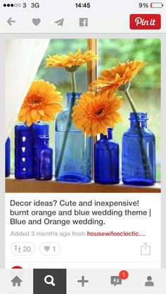 Complimentary orange and blue