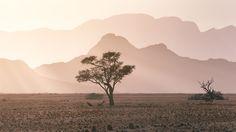 Captured from Elim Dune on the edge of the Namib Desert Namib-Naukluft National Park / Namibia Land Of The Brave, Namib Desert, Morning Sun, Love Me Forever, Africa Travel, Diversity, Tourism, National Parks, Traveling