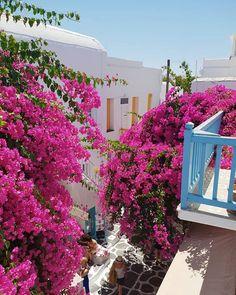 Kalimera  .  #summeringreece #visitgreece #discovergreece