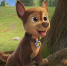 Paw Patrol Bedding, Los Paw Patrol, Birthday Wishes, Scooby Doo, Pup, Fictional Characters, Aesthetics, Album, Humor