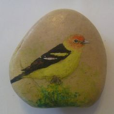 Handpainted+WESTERN+TANAGER+Small+Rock+by+Nature+Artist+Robert+Halstead+