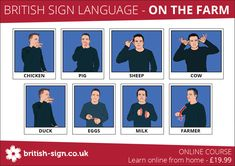 Language bsl, auslan and new zealand sign language nzsl may be. Sign Language Phrases, Sign Language Alphabet, Sign Language Interpreter, Learn Sign Language, Speech Language Therapy, Speech And Language, Sign Language Translator, Learn Bsl, Makaton Signs