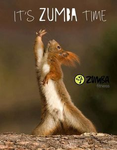 Everything you need to know about zumba zumba More