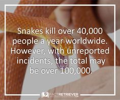 Around 1 million people are bitten by snakes per year.