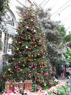 1000 Images About Dc Christmas On Pinterest Washington Dc Christmas Trees And Alexandria