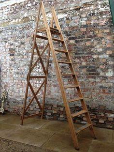 Vintage wooden platform ladder at The Architectural Forum
