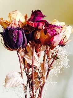 Faith's bouquet from Grad night doesn't look as fresh as these dried roses after fifteen years.