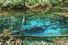 神の小池 lake Kaminoko