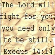 Exodus 14:14. No matter the battle, He will fight for us! What a comfort!