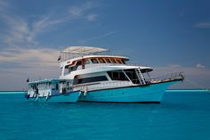 Sheena Liveaboard Maldives, SAVE 50% during summer months. South Atolls (Filitheyo - Filitheyo). Only at 890 USD pp