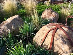 Kathleen Murphy landscape design, native Australian garden using local stone boulders and mild steel strapping to explore the concept of 'containment' Native Australians, Australian Garden, Bouldering, Landscape Design, Garden Sculpture, Landscaping, Concept, Explore, Texture
