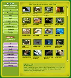 technology rocks. seriously.: Animal Habitats